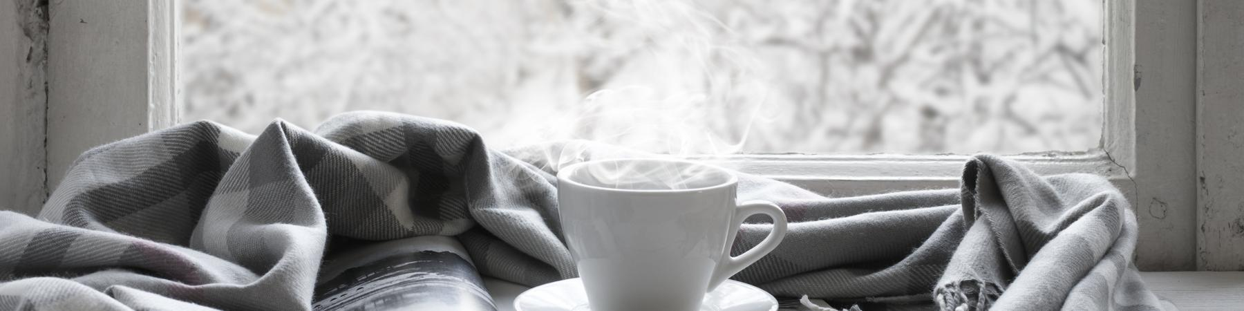 Prepare for Winter and Get Cozy with Rinnai Heating Products